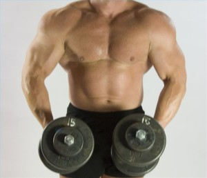 article-new-ehow-images-a04-tr-sp-testosterone-muscle-growth_-800x800-300x258